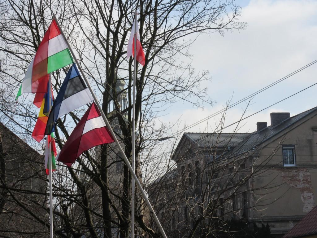 29 Flag Ceremony