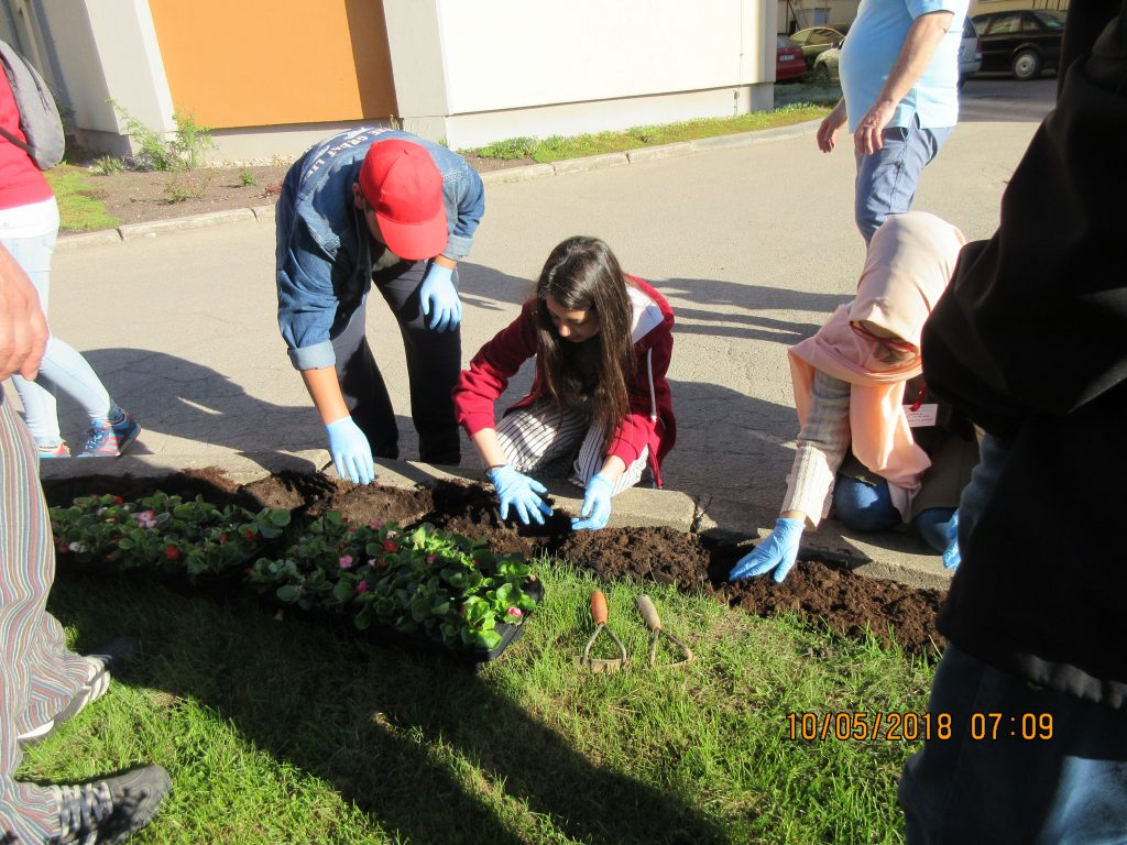 73. Planting the flowers