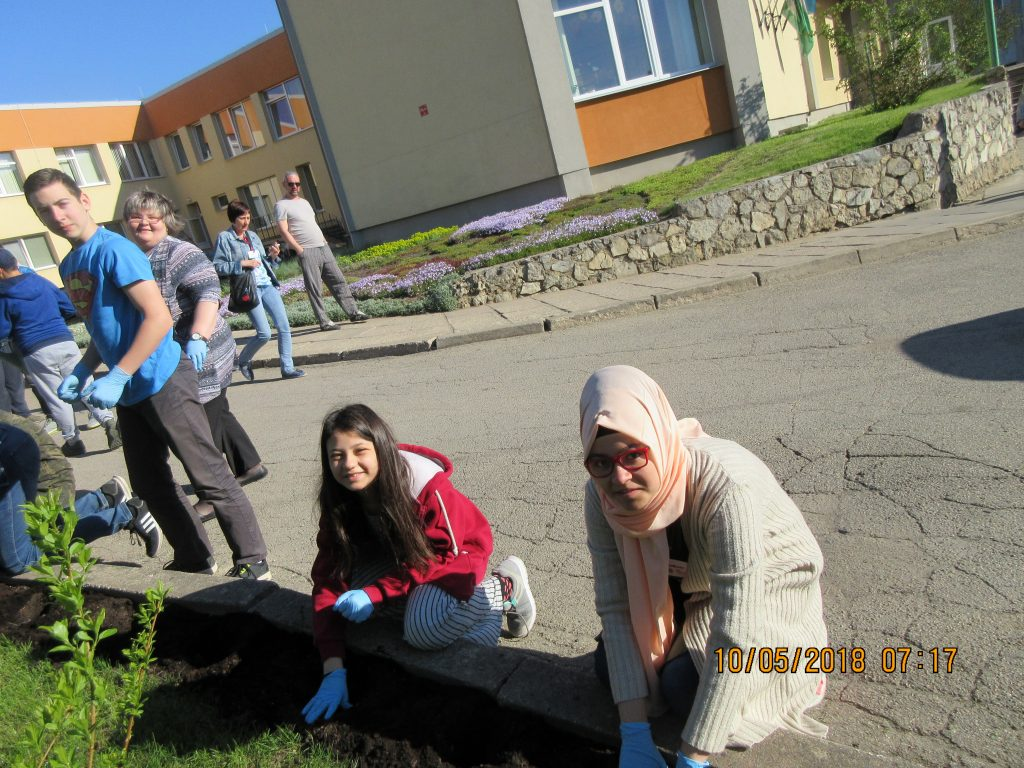 74. Planting the flowers